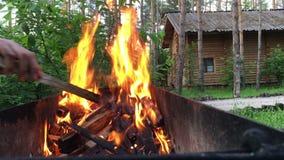 火盆灼烧的木头 在格栅的强的火 股票录像