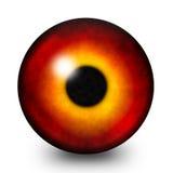 火眼睛学生例证 库存照片