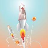 火箭安全 皇族释放例证
