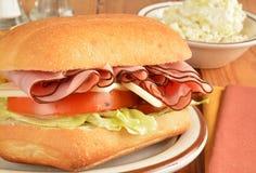 火腿和乳酪三明治特写镜头 免版税库存照片
