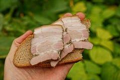 火腿面包和片断在手的棕榈的在绿色叶子背景的  免版税图库摄影
