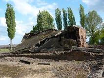 火葬场的废墟在前集中营的 auschwitz birkenau 免版税库存图片