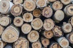 火葬用的柴堆&柴堆 免版税库存照片