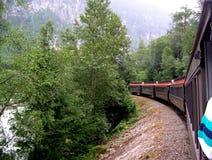 火车一览 免版税库存照片