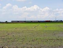 火车和领域 库存图片