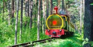 火车在夏天森林里 库存照片