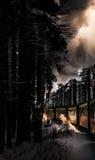 火车在多雪的森林里 免版税库存照片