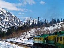 火车在阿拉斯加 免版税库存图片