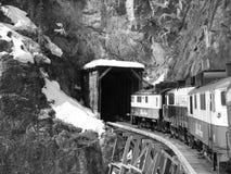 火车在阿拉斯加 免版税图库摄影