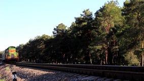 火车审阅森林 股票录像