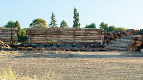 火车推车充满木材树日志 免版税库存照片