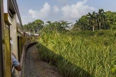 火车旅行在巴拿马 免版税库存照片