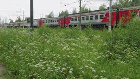 火车移动的近的绿色领域和乡下公路看法  影视素材