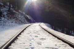 火车轨道在冬天多雪的森林里 免版税图库摄影