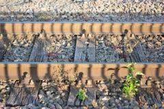 火车轨道在金黄小时 免版税库存照片