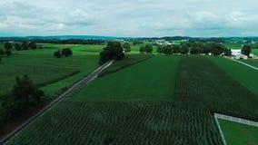 火车轨道在门诺派中的严紧派的乡下和农田如看见由寄生虫 股票录像