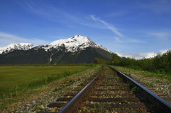 火车轨道在Chugach国家森林里 库存照片