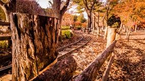 火车轨道在nam-i海岛汉城韩国 库存图片