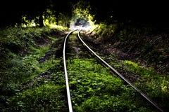 火车轨道通过绿色树 库存照片