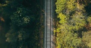 火车轨道鸟瞰图在秋天富挑战性生活旅途,对未来的方式的森林概念的,追逐作梦 股票录像