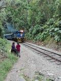 火车MachuPicchu秘鲁机车密林 库存照片