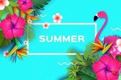 火鸟和桃红色木槿花 热带的夏天 棕榈叶,植物,赤素馨花-在纸的羽毛削减了艺术 鸟  免版税库存照片
