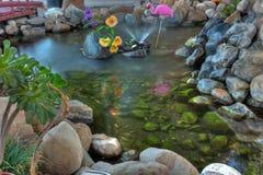 火鸟在岩石池塘 库存图片