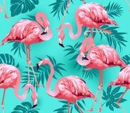 火鸟鸟和热带花背景 库存例证