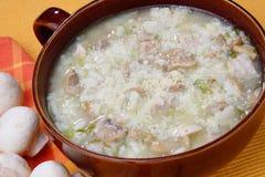 火鸡炖肉汤用蘑菇 免版税库存图片