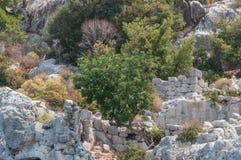火鸡 地震毁坏的古城Kekova的地中海coastRuins 免版税库存图片
