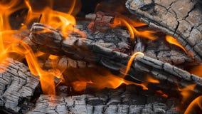 火:灼烧的木和闷燃的炭烬 免版税库存图片
