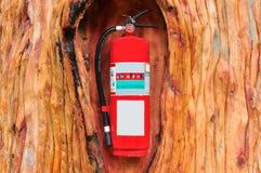 灭火器火红色结构树 免版税图库摄影