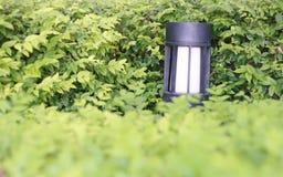 灯在庭院里 库存图片