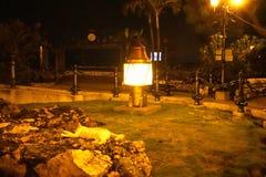 灯塔、猫和堡垒 图库摄影