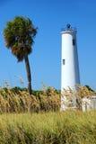 灯塔和一棵棕榈树在一个热带海岛上  库存图片