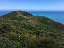 灯塔和路在海角Reinga,北国,新西兰 库存照片