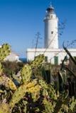 灯塔在福门特拉岛,西班牙 免版税库存照片
