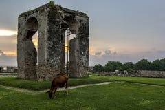 灯塔的遗骸在老荷兰堡垒的在贾夫纳,斯里兰卡 免版税库存图片