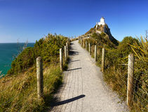 灯塔,矿块点,新西兰 免版税库存图片