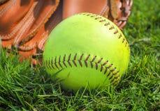 绿灯棒球& x28; training&的x29球;在手套 库存图片