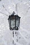 灯笼冬天 库存照片
