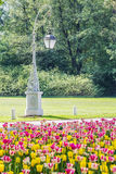 灯笼和一张花床与郁金香,圣彼德堡,俄罗斯 库存照片