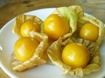 灯笼果或金黄莓果 免版税图库摄影
