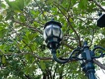 灯街道在Mother公主纪念公园,曼谷,泰国 库存图片