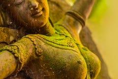 灰泥女神神圣与绿色青苔 免版税图库摄影