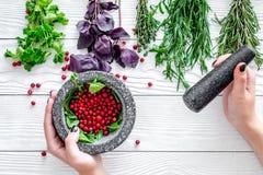 灰浆用莓果、草本和香料成份在白色木背景顶视图 免版税库存图片