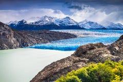 灰色冰川,托里斯在巴塔哥尼亚的del潘恩,智利 库存照片