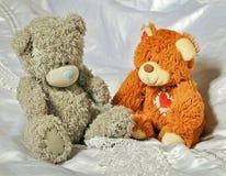 灰色和眉头熊在卧室 库存照片