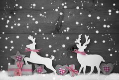 灰色圣诞节装饰,在爱的驯鹿夫妇,雪花 库存照片