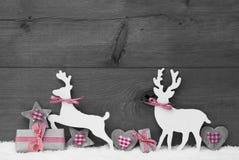 灰色圣诞节装饰,在爱的驯鹿夫妇 免版税库存图片